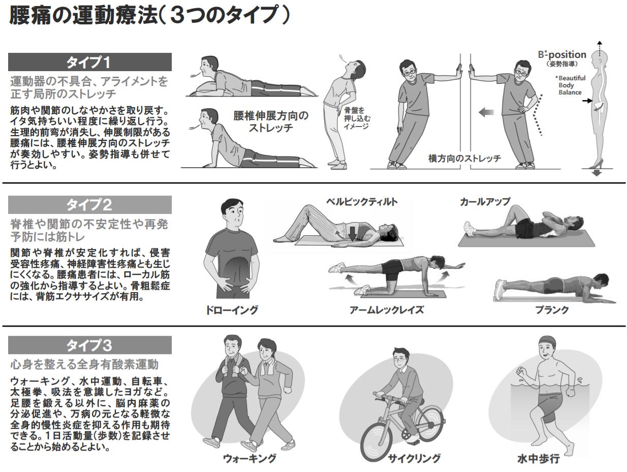 腰痛の運動療法
